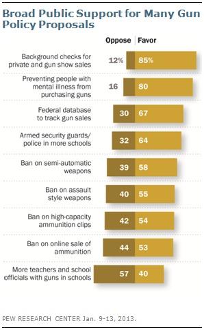 Gun approval poll