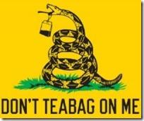 Don't Tea Bag On Me Flag
