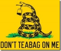 Don't Tea Bag On Me Flag