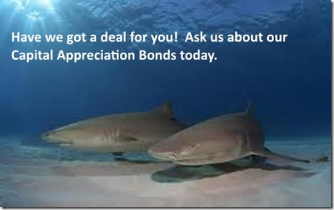 Capital appreciation bonds