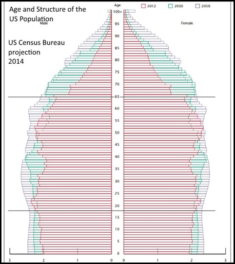 age structure us population chart