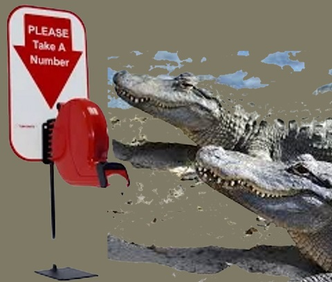 Alligators at the deli.jpg