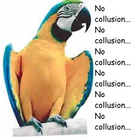 Parrot No Collusion